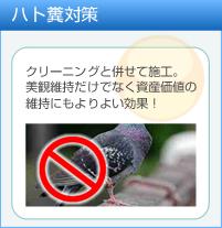 ハト糞対策